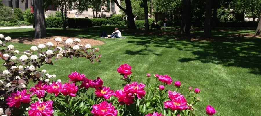 University of Chicago Quad